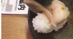 Zappelndes Sushi geht im Internet viral